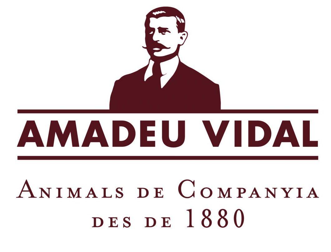 Amadeu Vidal